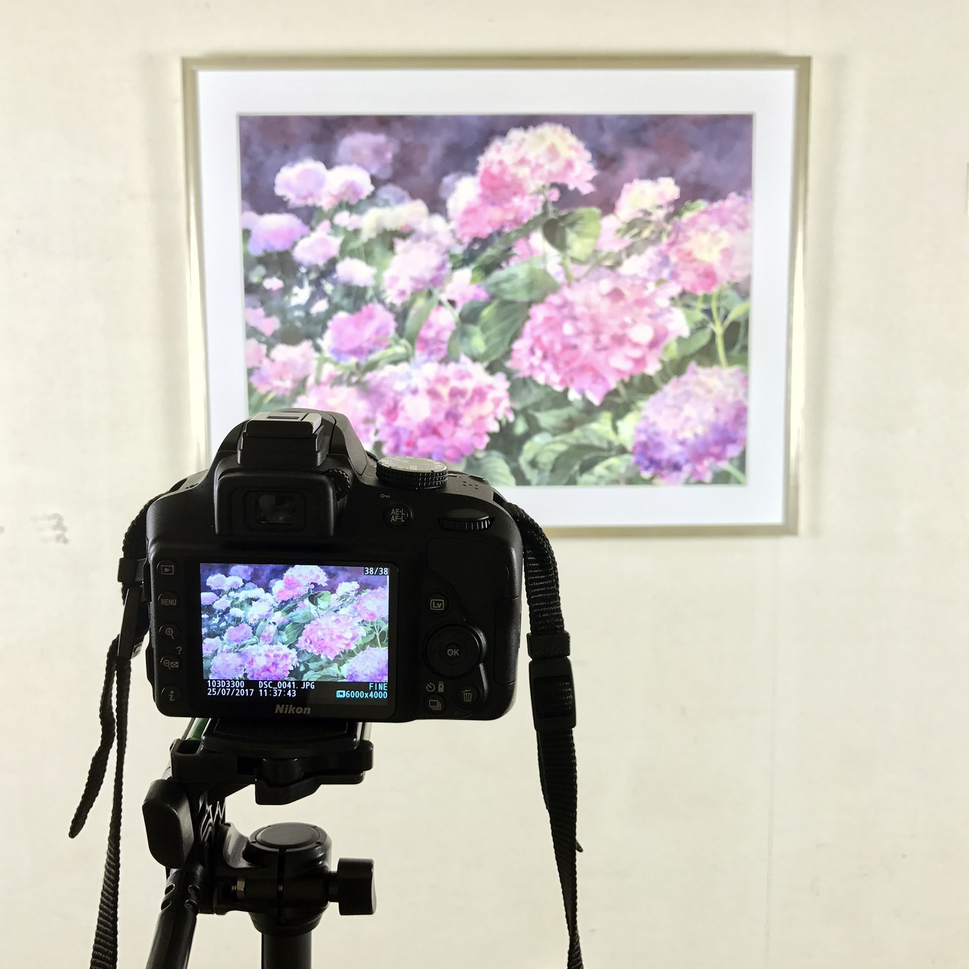 Rhode Island Watercolor Society - Digital Photography Service